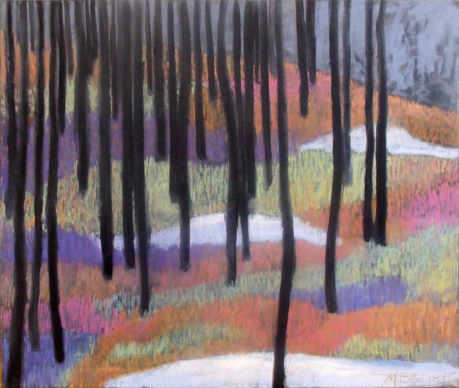 Forêt de Bourg-Louis